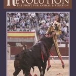 Radical Revolution: The fight for animal liberation by Stephen Saunders